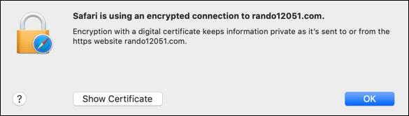 DV certificate info in Safari